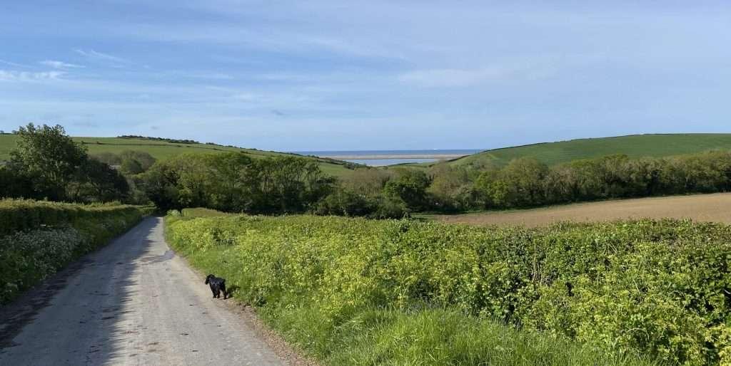 Walking in Dorset by the Fleet.