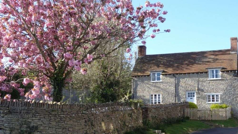 3 Lower Farm Cottage in Dorset